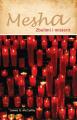 Mesha - Zbulimi i misterit